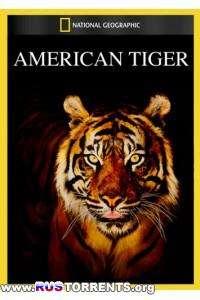 Nat Geo Wild: Американский тигр   HDTVRip