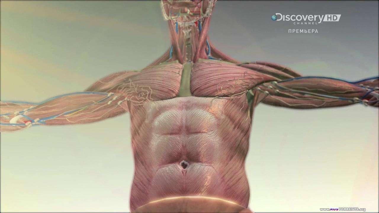 Discovery: Будущее с Джеймсом Вудсом (01x01-05 из 06) | HDTVRip 720p
