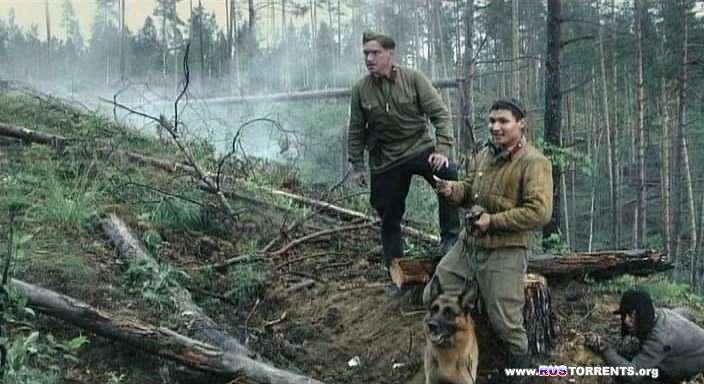 Служу Советскому Союзу (фильм из двух частей)