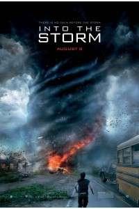 Навстречу шторму | BDRemux 1080p | Лицензия