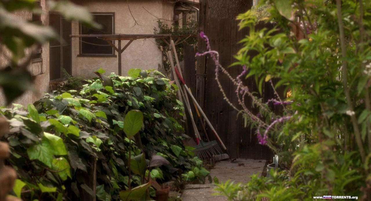 Малхолланд Драйв | BDRip 720p