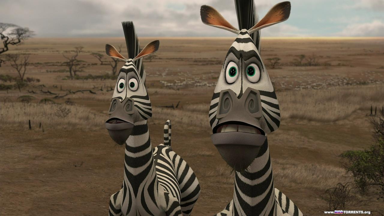 Мадагаскар: Трилогия | BDRip 720p