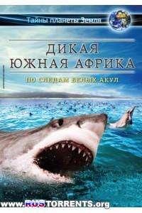 Дикая Южная Африка. По Следам Белых Акул | BDRemux 1080p