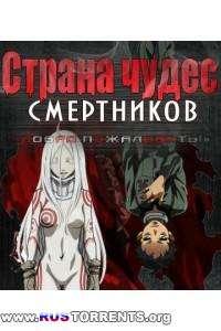 Страна чудес смертников | DVDRip-AVC | AniFilm
