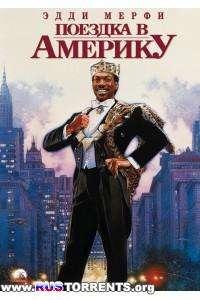 Поездка в Америку   BDRip-AVC