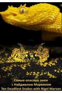 Самые опасные змеи с Найджелом Марвином [S01: 01-04 из 04] | HDTVRip 720p