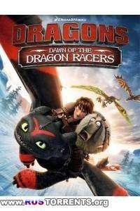 Драконы: Гонки бесстрашных. Начало | BDRip 720p | Лицензия | 60 fps