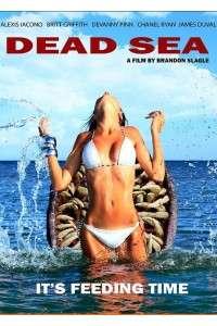 Мёртвое море | DVDRip | L