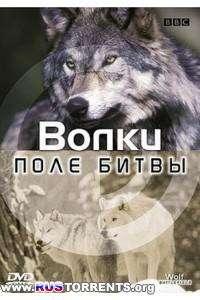 BBC: Поле битвы. Волки | DVDRip-AVC