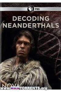 PBS: Геном неандертальцев | SATRip