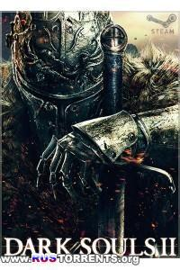 Dark Souls 2 [Update 10 + DLC] | РС | RePack от R.G. Freedom