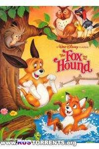 Лис и охотничий пес | DVDRip