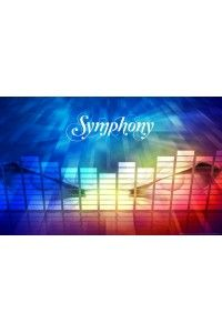 Symphony | PC | Steam-Rip от R.G. Gameworks