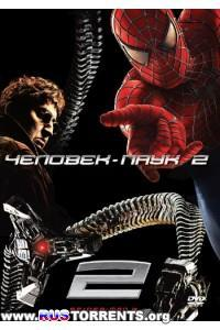 Человек-паук 2.1 | HDRip | Расширенная версия