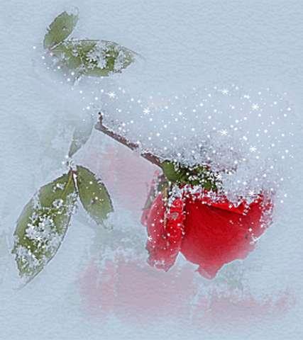 Шины зимние йокогама в нижнем новгороде