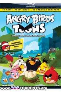 Злые птички | HDRip | Лицензия