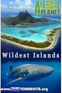 Неизведанные острова (1-8 серии) | HDTVRip 720p
