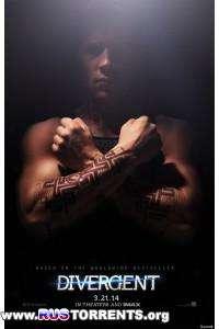 Дивергент | Blu-ray 1080p | Лицензия