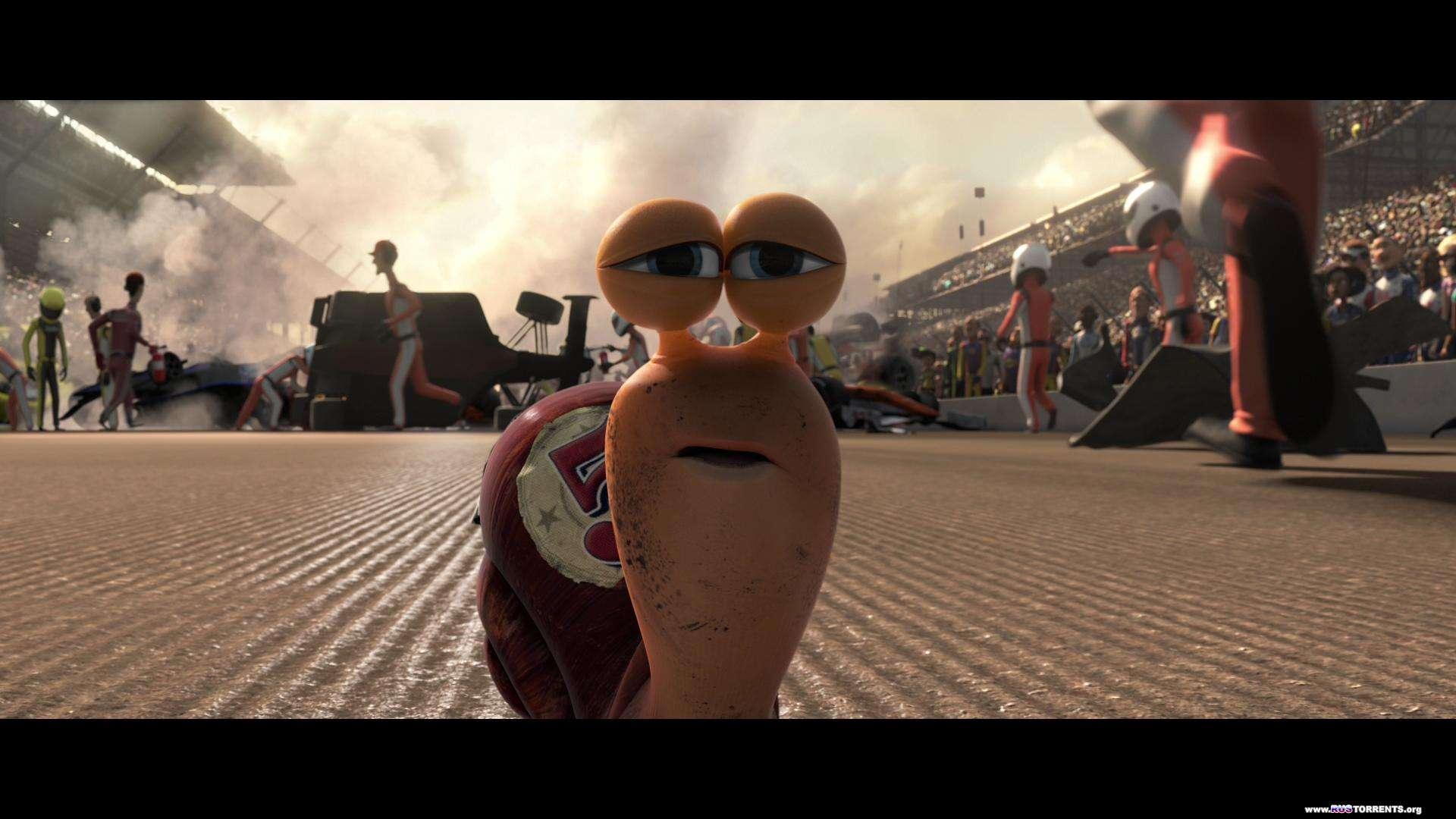 ����� | Blu-Ray 1080p | 3D-Video | ��������