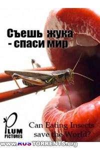 BBC: Может ли питание насекомыми спасти мир?   HDTVRip-AVC