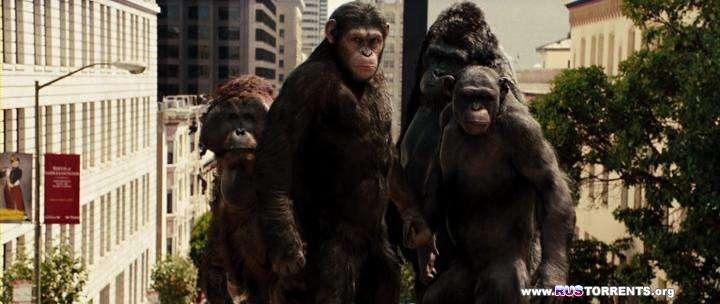 Восстание планеты обезьян | HDRip