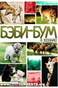 Бэби-бум в зоопарке (1-7 серии) | SATRip | D