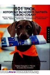 101 трюк, которому вы можете научить свою собаку
