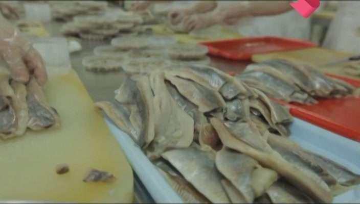 Раскрывая тайны. Еда. Рыба | SATRip