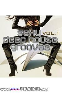 VA - Sexy Deep House Grooves, Vol. 1 (Attractive & Sensual House Collection)