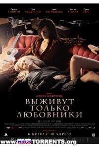 Выживут только любовники | DVD5 | Лицензия
