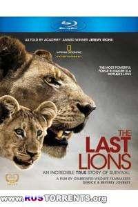 Последние львы | BDRip 720p