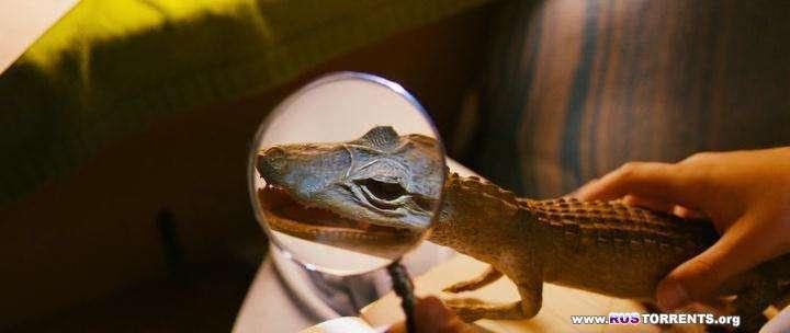 Дом крокодилов | WEB-DLRip | P