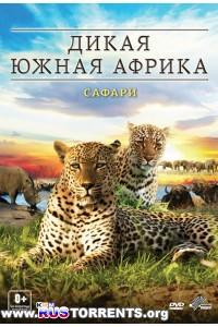 Дикая Южная Африка: Сафари | BDRip