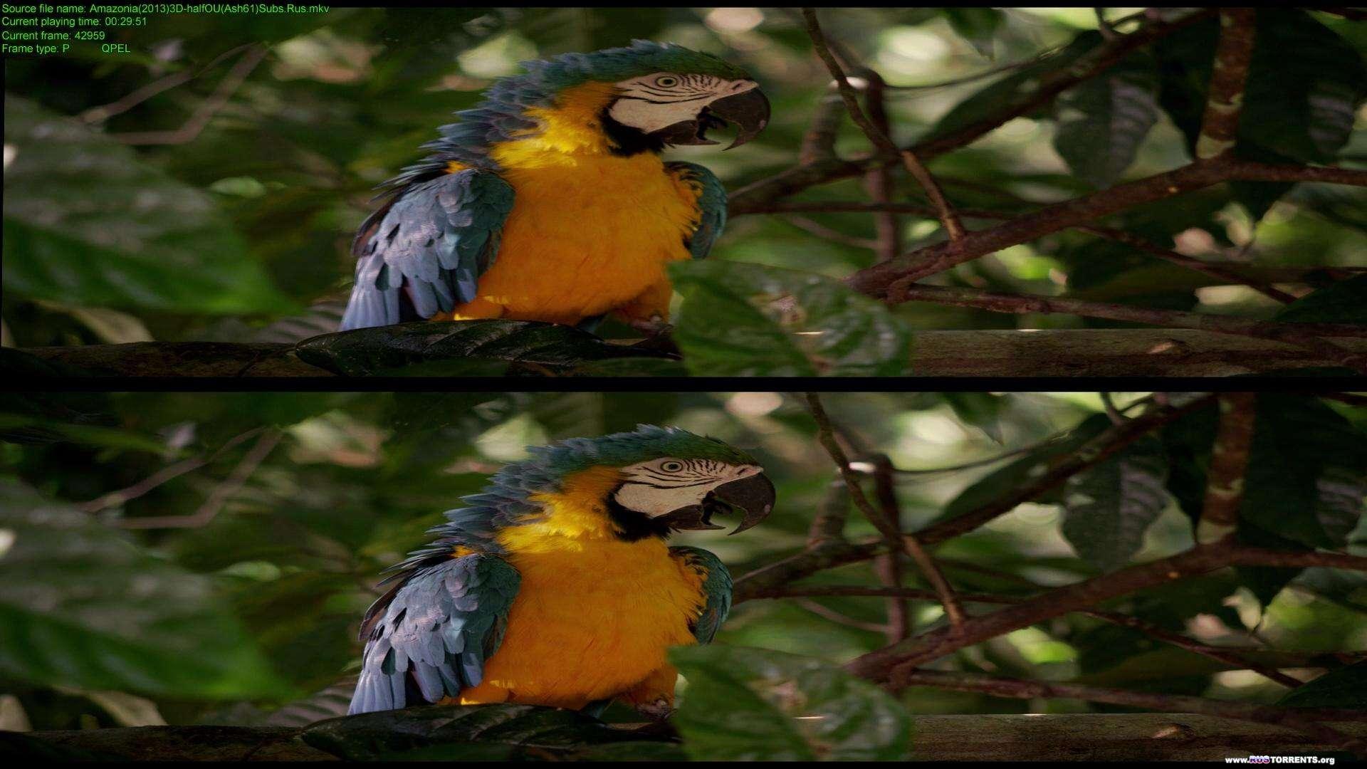 Амазония: Инструкция по выживанию | BDRip 1080p | 3D-Video | halfOU | L1