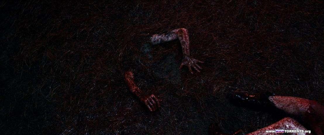 Зловещие мертвецы: Черная книга | BDRip-AVC | Лицензия