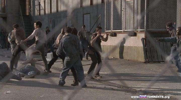 Ходячие мертвецы [03 сезон: 01-16 серии из 16] | HDTVRip | Кубик в Кубе
