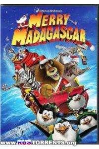 Рождественский Мадагаскар | HDTVRip