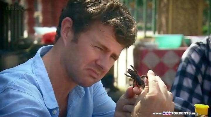 BBC: Может ли питание насекомыми спасти мир? | HDTVRip