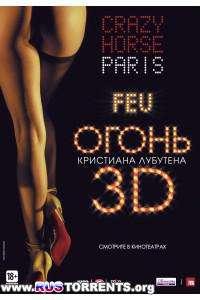 Огонь Кристиана Лубутена 3D   HDRip   Лицензия