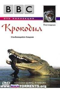 BBC: Плотоядные. Крокодил   DVDRip-AVC