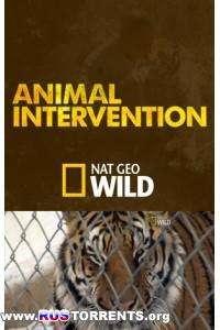 Nat Geo Wild: Жизнь в неволе / Дикие животные в неволе (6 серий из 6) | HDTVRip
