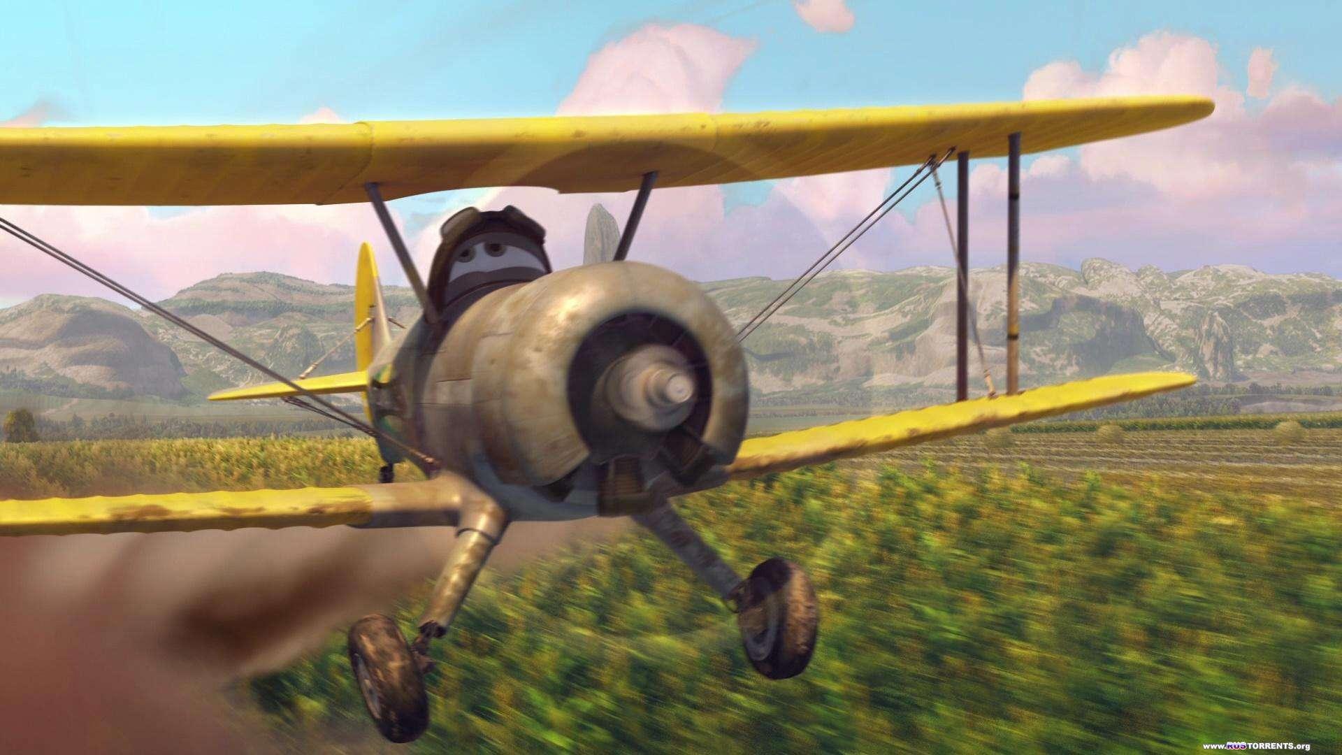 Самолёты   BDRemux 1080p   Лицензия