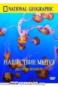 National Geographic: Нашествие медуз | HDTVRip 720p