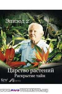 Царство растений |Эпизод 2 - Раскрытие тайн| BDRip