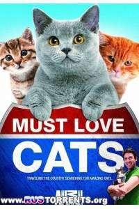 Animal Planet: Кошек не любить нельзя | HDTVRip