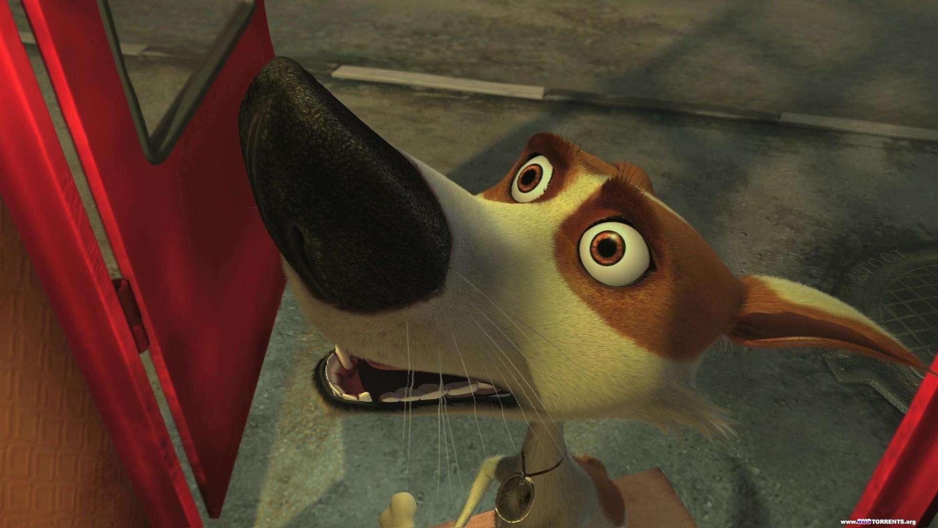 Звёздные собаки: Белка и Стрелка | BDRip 1080p