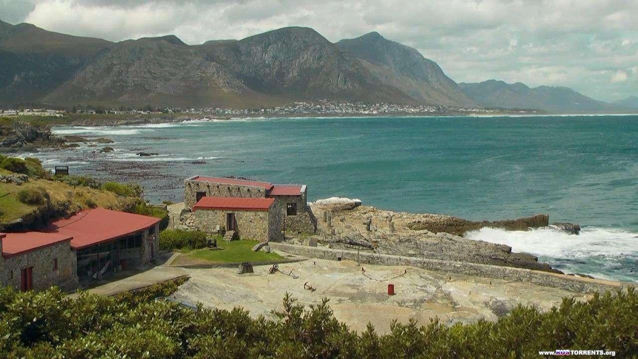 Дикая Южная Африка. По Следам Белых Акул | BDRip 720p