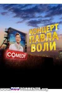 Музыкальный концерт Павла Воли. Новое. (01.01.2013)   SATRip