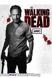 Ходячие мертвецы [04 сезон: 01-16 серии из 16] | WEB-DL 720p | Fox Crime