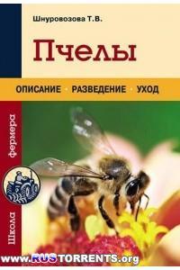 Пчелы. Описание, разведение, уход
